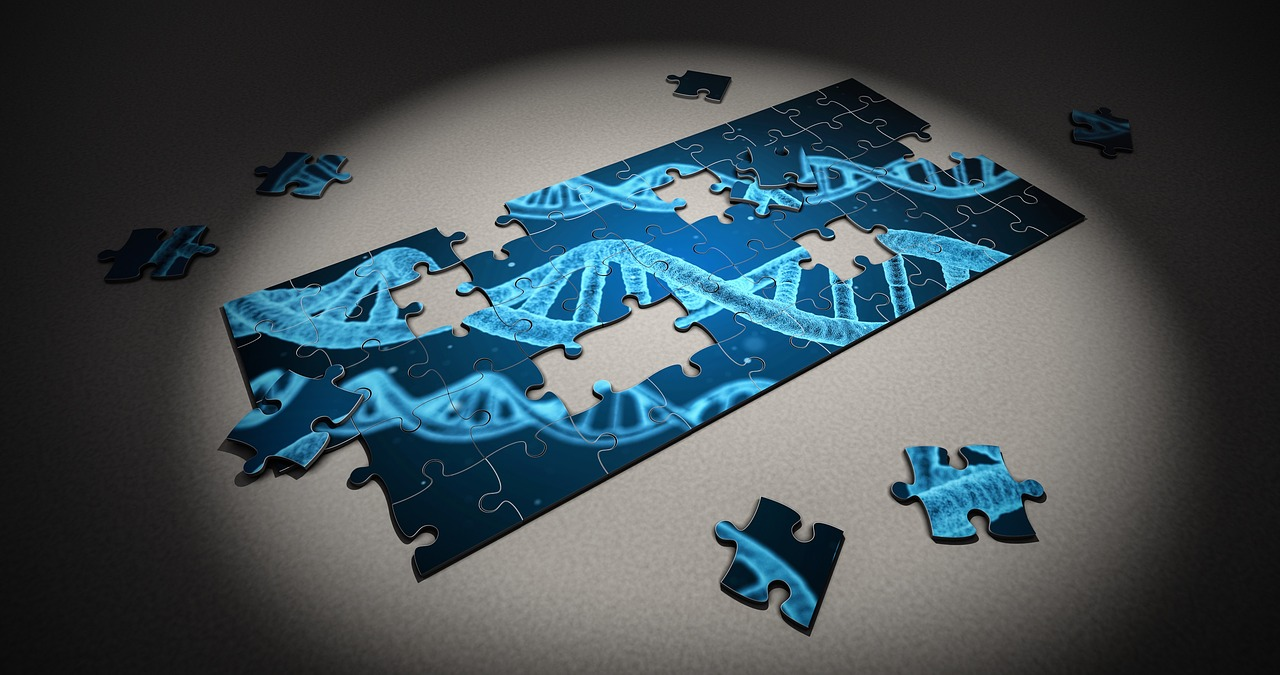 7 Questions That Will Help You Understand Epigenomics